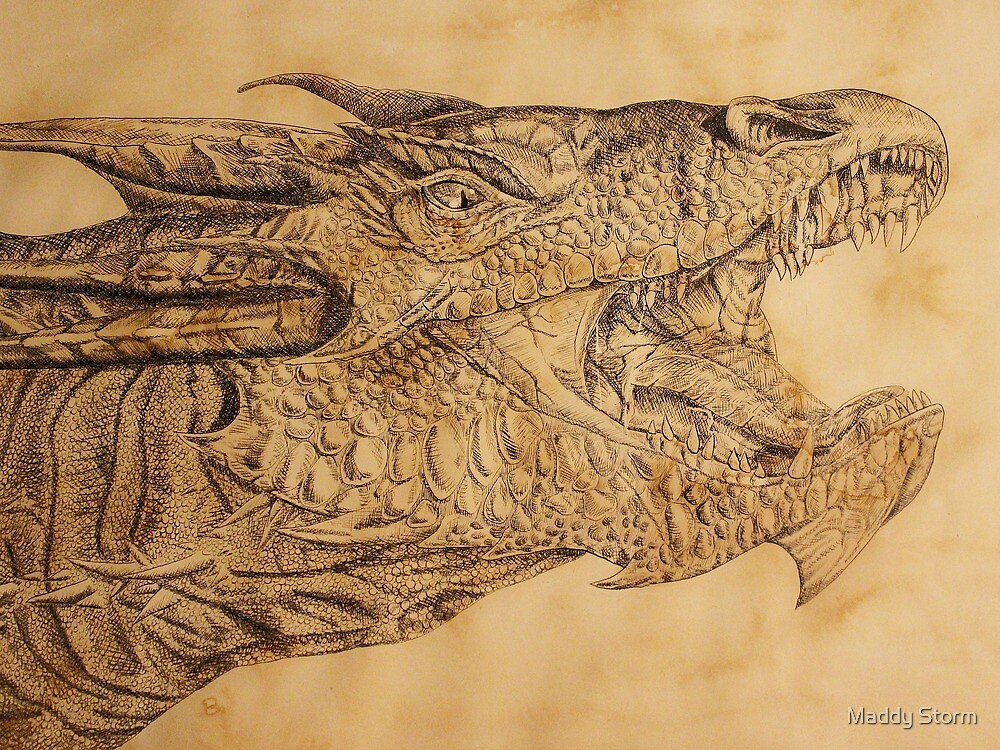 The Desolation of Smaug by Maddy Storm