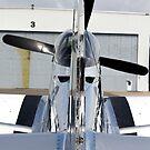 P51 Mustang by cadman101