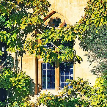Romantic Window, University of Oxford by ForeverFrodo