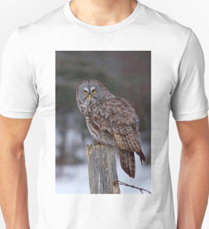 Piss Off! - Great Grey Owl T-Shirt
