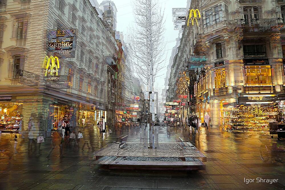 The Karntner Strasse Vienna  by Igor Shrayer