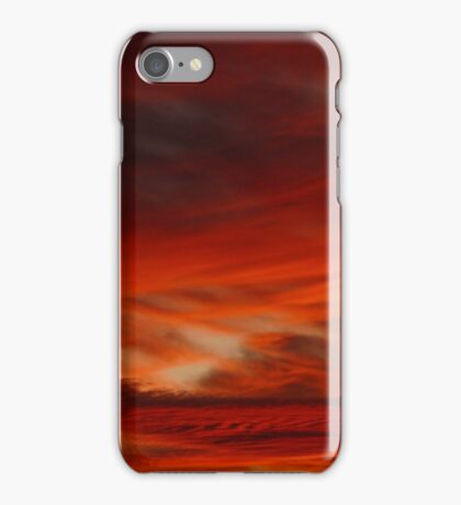 Desert Delight iPhone Case/Skin