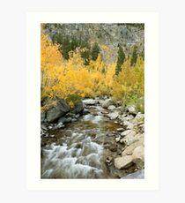 Fall Colors And Rushing Stream - Eastern Sierra Art Print
