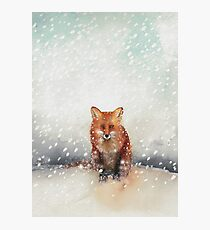 Red Fox in the Snow Photographic Print