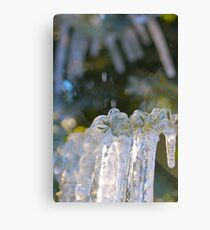 ice... Canvas Print