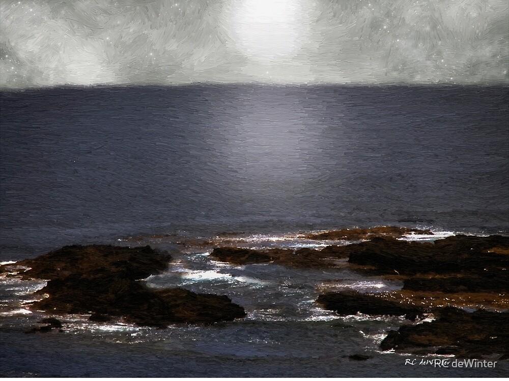 Silvered Sea by RC deWinter