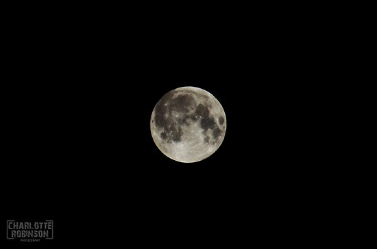 Super Moon  by Charlotte Robinson
