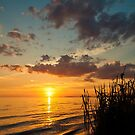 Mississippi Gulf Coast  Sunset Case by Jonicool