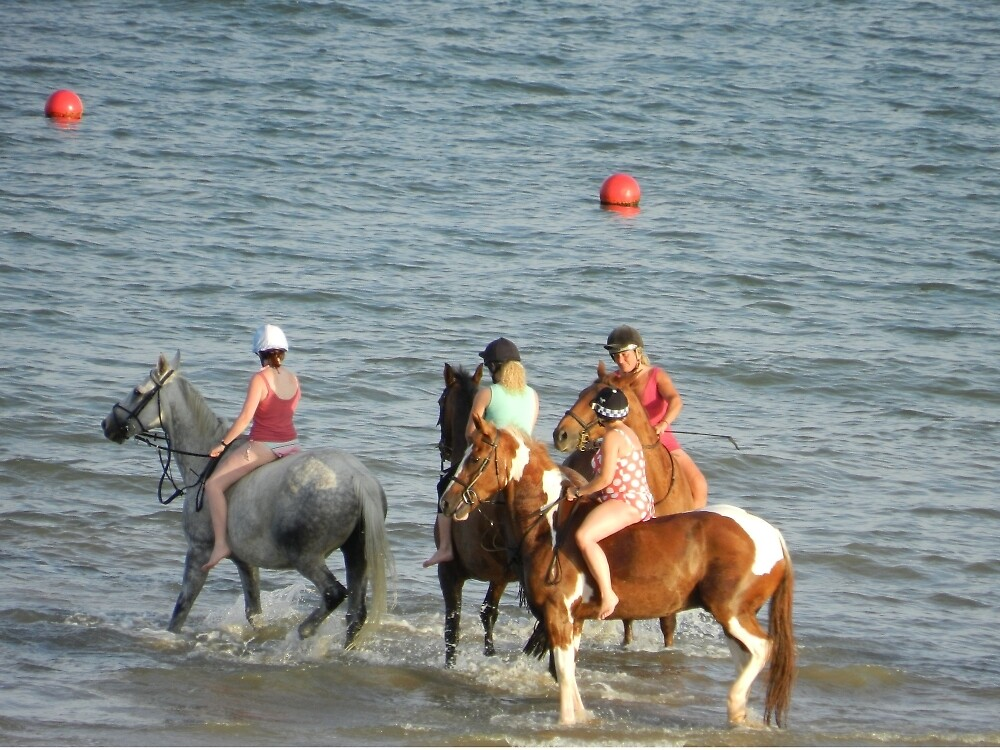 horses on the beach by TOFFS