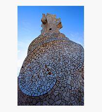 Gaudi's Pottery Photographic Print