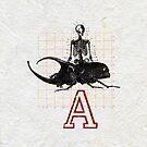 EN EL PRINCIPIO LA MUERTE LLORO EL FIN DEL ESCARABAJO (In the beginning death cried the end of the beetle) by Alvaro Sánchez