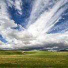 Idaho Sky by Marzena Grabczynska Lorenc
