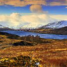 Ben Lomond View by Don Alexander Lumsden (Echo7)