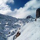Glacier du Geant I by geophotographic