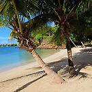 Alone on the beach by John Dalkin
