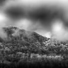 Storm Day in Black & White by JKKimball