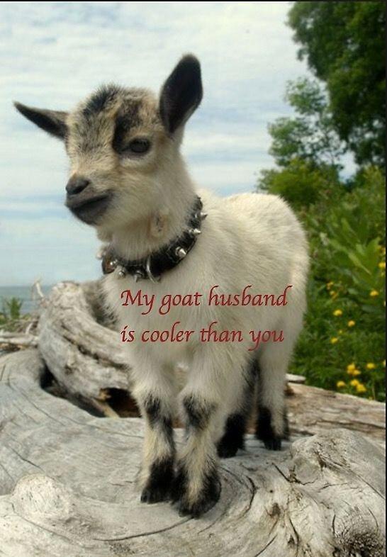 Emo Goat Husband by mddancer88