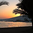 Trogir harbour sunset by Elena Skvortsova