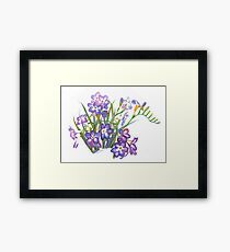Purple Freesia in Spring Framed Print