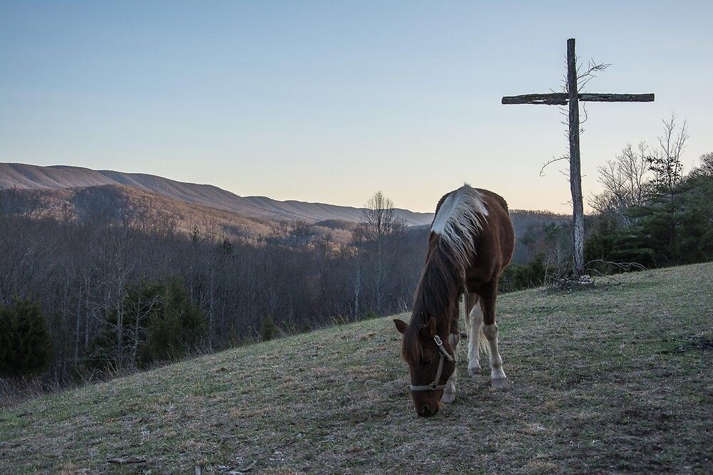 Horse on the mountains by GalaxyMcNeill
