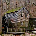 Rice Gristmill II (HDR) by Douglas  Stucky