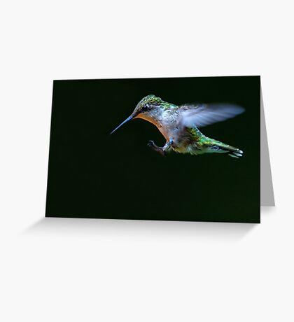 Incoming - Ruby-throated hummingbird Greeting Card