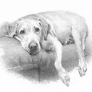 Couch dog drawing by Mike Theuer
