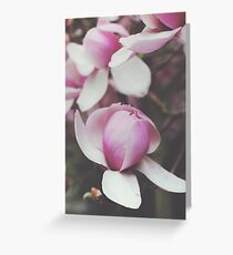 Magnificent Magnolia Greeting Card