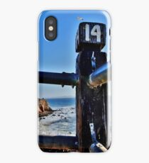 number 14 seagull iPhone Case