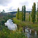 Omeo High Country, Gippsland, Victoria, Australia. by johnrf