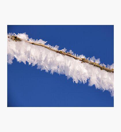 Ice crystal comet Photographic Print
