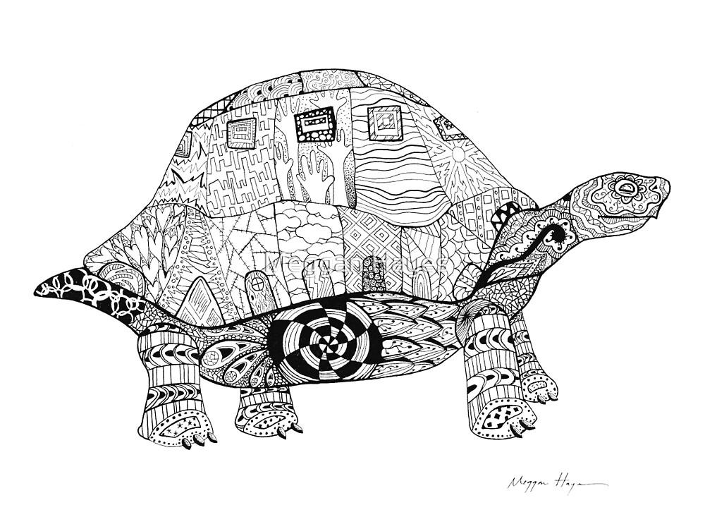 Turtle by Meggan Hayes