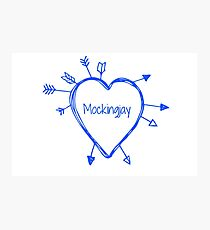 Mockingjay Photographic Print