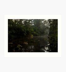 Kangaroo Valley - Peacefull Creek view 01 Art Print