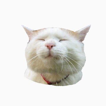 gato de emerbelle