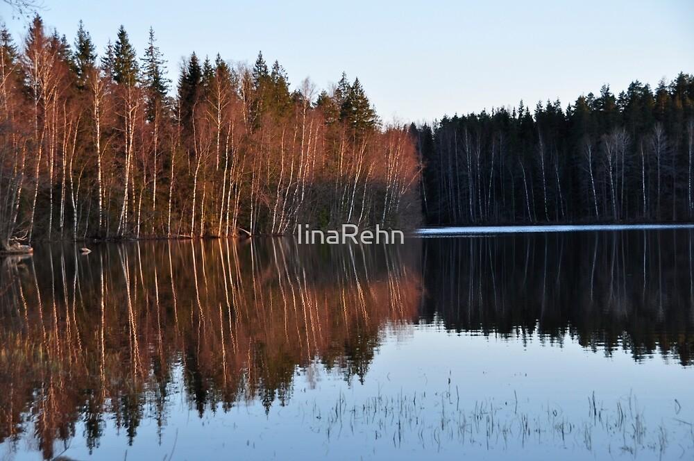 Autumn in Finland by IinaRehn