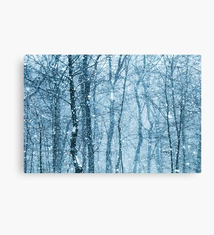 Snow Falling  Canvas Print