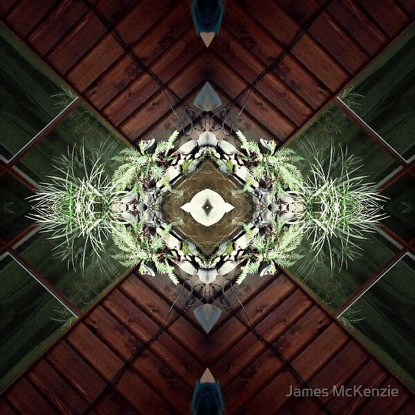 Symmetry 03 by James McKenzie
