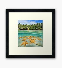 tropical shore split with sea stars underwater Framed Print