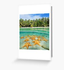 tropical shore split with sea stars underwater Greeting Card