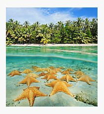 tropical shore split with sea stars underwater Photographic Print