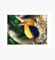THE GREAT KINGFISHER Art Print