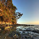 Adventure Bay Coastal Reserve HDR - Bruny Island, Tasmania, Australia by PC1134