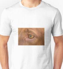 My Friend Cal T-Shirt