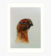 Grouse Watercolour Design  Art Print