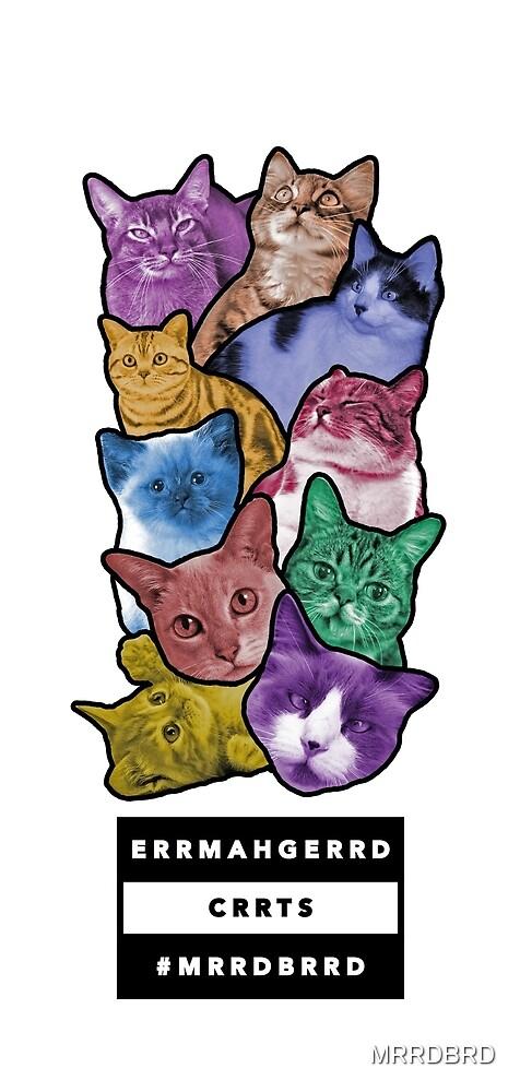 Oh My God. Cats! (ERRMAHGERRD CRRTS) by MRRDBRD