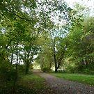 Peninsula path in early autumn by nealbarnett
