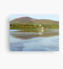 Irish Cottages In Donegal Metal Print