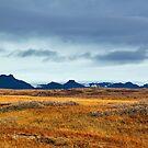 Beautiful Iceland by Jasna
