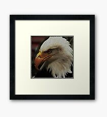 ASCii EQUAL EAGLE by ROOTCAT Framed Print